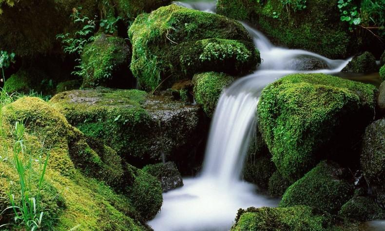 вода из под крана, родник, водопад